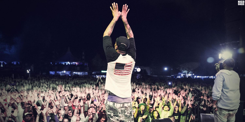 Royal Arena Festival, édition2014
