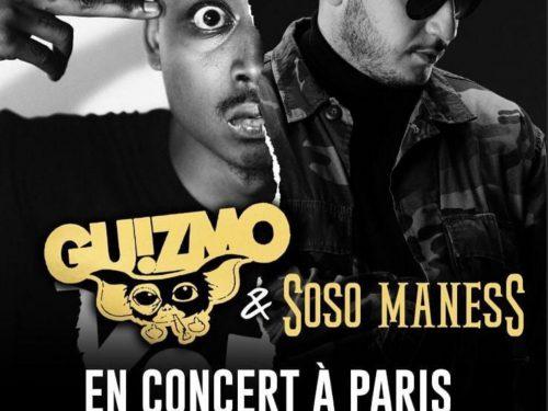 Guizmo et Soso Maness en concert au FGOBarbara